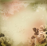 Vector grunge, vintage background with roses Stock Images