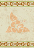 Vector grungy aloha background with tropical hibiscus flower Royalty Free Stock Images