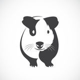 Vector of guinea pig design. Royalty Free Stock Photography