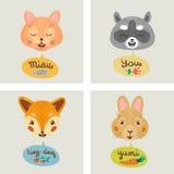 Vector Gutschein mit Fuchs, Katze, Häschen und Waschbären Stockbilder