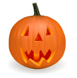 Vector Halloween Royalty Free Stock Photography