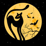 Vector Halloween background with black cat. Stock Image