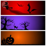 Vector halloween banners Royalty Free Stock Photo