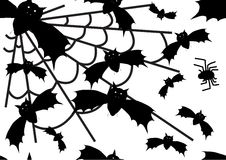 Vector halloween bat and spider background Royalty Free Stock Photography
