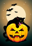 Vector Halloween Poster with a black cat Stock Images