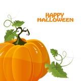 Vector halloween pumpkin Stock Image