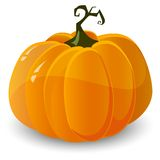 Vector halloween pumpkin Stock Images