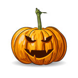 Vector Halloween pumpkin face  on white background Stock Image