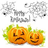 Vector halloween pumpkin with spider web Stock Photo