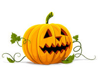 Vector halloween pumpkin vegetable fruit isolated Royalty Free Stock Images