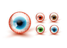 Vector Halloween Set. Scary Bloody Realistic Eyeballs. Vector Halloween Set Stock Images