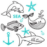 Vector hand draw cattoon whale, fish, dolphin, star and shark Royalty Free Stock Photo