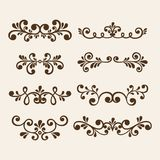 Vector hand draw vintage floral design elements. Flowers decorative elements. Floral elements for decoration set. stock illustration