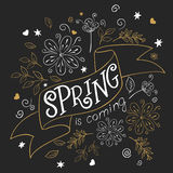 Vector hand drawing lettering quote - spring is coming - on ribbon with curly, swirly, paw print, bird and feather Stock Photography
