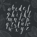 Vector hand drawn alphabet. Handwritten script  with numbers. Royalty Free Stock Image