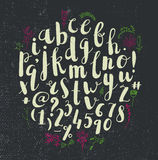 Vector hand drawn alphabet. Handwritten script  with numbers. Stock Images