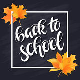 Vector hand drawn back to school lettering with frame, realistic maple leafs and greetings label on blackboard Stock Image
