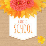 Vector hand drawn back to school lettering with paper banner, realistic maple leafs, dahlia flowers and greetings label Royalty Free Stock Photography