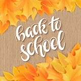 Vector hand drawn back to school lettering with realistic maple leafs and greetings label on wooden background. Can be Stock Image