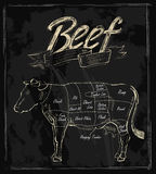 Vector hand drawn beef. Cuts chart on black Royalty Free Stock Image
