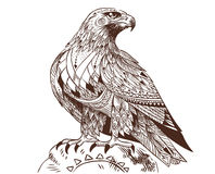 Vector hand drawn bird of prey sitting on a stone. Illustration in bohemian style. Illustration for adult coloring book Stock Photo