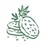 Vector hand drawn cannabis cookies illustration on white background vector illustration