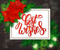 Vector hand drawn christmas lettering greetings text - best wishes - with christmas brunch, poinsettia flowers and bulb Royalty Free Stock Photos