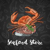 Vector hand drawn colored seafood elements composition on dark gradient background with lettering for seafood store or vector illustration