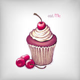 Vector hand drawn cupcake Stock Image