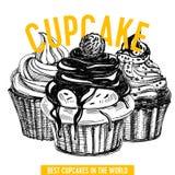 Vector hand drawn cupcake Illustration. Royalty Free Stock Image