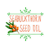 VECTOR hand drawn design element: `seabuckthorn seed oil`. Isolated on white Stock Photos
