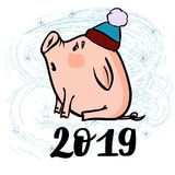 Vector hand drawn doodle illustration of new year winter piglet with a snowflake and 2019. Vector hand drawn doodle illustration of new year winter piglet in a Royalty Free Stock Images