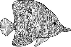 Vector hand drawn doodle outline fish illustration. Decorative fish drawing with abstract ornaments Royalty Free Stock Photography