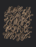 Vector hand drawn elegant alphabet. Delicate letters written wit Stock Images