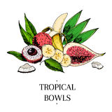 Vector hand drawn exotic fruits. Engraved smoothie bowl ingredients. colored icons. Tropical sweet food. Lychee, banana. Fig, coconut. Use for exotic Stock Photo