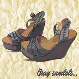 Vector hand drawn female sandals. Illustration Stock Photo