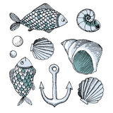 Vector hand drawn fish and shell and anchor Royalty Free Stock Photo
