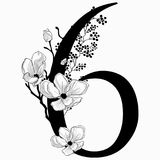 Vector Hand Drawn floral Number Six monogram and logo. Vector Hand Drawn floral Number Six monogram or logo. Numeric 6 with Flowers and Branches, Cherry Blossom Stock Photography
