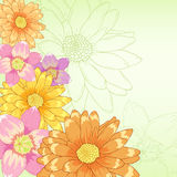 Vector hand drawn flowers with green background Stock Photography