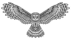 Vector hand drawn flying owl. Black and white zentangle art Stock Photos