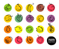 Vector hand drawn fruits sketch. Stock Photos