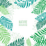 Vector hand drawn green palm tree leaves, grunge background. Stock Images