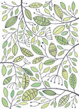 Vector hand drawn greens leaves Stock Images