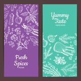 Vector hand drawn herbs spices banners illustration stock illustration