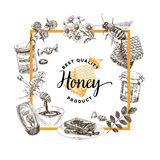 Vector hand drawn honey Illustration. Royalty Free Stock Images