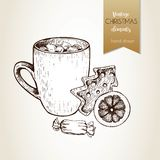 Vector hand drawn illustartion of cocoa cup, gingerbread cookie, orange slice and candy. Christmas decoration. Royalty Free Stock Photography