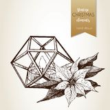 Vector hand drawn illustartion of poinsettia and geometric lantern. Vintage engraved style. Stock Photography