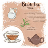 Vector hand drawn illustration of black tea recipe with list of ingredients Stock Photos