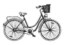European city bike. Vector hand drawn illustration of city bicycle in ink hand drawn style. Bike with step-through frame, pannier rack and front wicker basket vector illustration