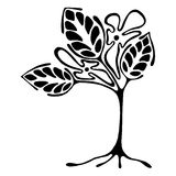 Vector hand drawn illustration, decorative ornamental stylized tree. Black and white graphic illustration isolated on the white background. Inc drawing vector illustration